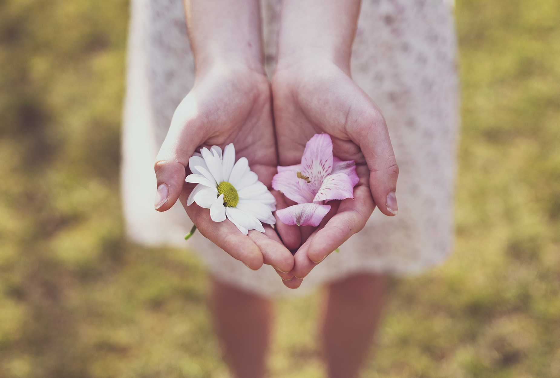 Blomma i hand KyrkA